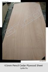 Red Pencil Cedar Plywood For Furniture, 2.7 - 21 mm thick