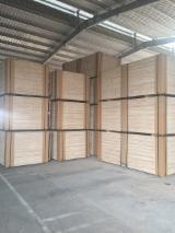 Platten und Furnier - Rohsperrholz - Industriesperrholz