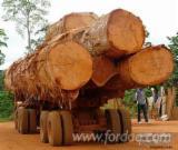 Tvrdo Drvo  Trupci Zahtjevi - Za Rezanje, Doussie