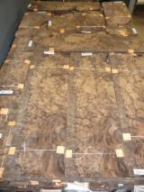 Sliced Veneer For Sale - American Walnut Sliced Veneer, Burl Cut, 0.55 mm thick