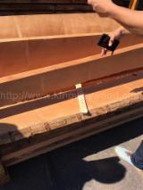 Unedged Hardwood Timber - FSC Beech Loose Timber 16-38 mm