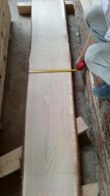 Unedged Timber - Boules Offers from Germany - Fresh Sawn Oak Loose Timber