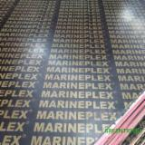China Plywood - Marine Plywood Cut To 18 x 1220 x 2440 mm For Dubai
