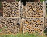Firewood, Pellets And Residues - Selling Cleaved Beech / Oak Firewood, AD 2 years, 50 cm