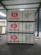 null - Film Faced Plywood 18mm