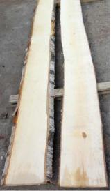 Find best timber supplies on Fordaq - Bois Commercial Wood - White Birch Pallet Lumber 23 mm