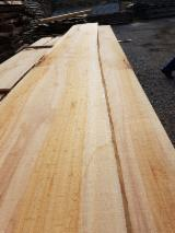 Hardwood  Unedged Timber - Flitches - Boules - AB Beech Loose Timber, 40-80 mm