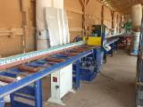 Hungary - Fordaq Online market - Used 2003 Reinhardt Crosscut Saws