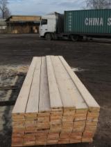 Drewno Na Pniu Na Sprzedaż - Chile, Sosna Radiata