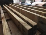 France Sawn Timber - Eucalyptus Planks 25,50 mm