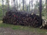 Firewood, Pellets And Residues - Beech / Birch / Oak Cleaved Firewood