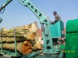 Forstmaschinen Kurzholz LKW - Gebraucht Grumiere Bardet Grumiere Bardet Kurzholz LKW Frankreich