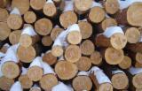 Nadelrundholz Zu Verkaufen Russland - Schnittholzstämme, Fichte