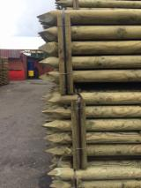 FSC Certified Softwood Logs - Pine Stakes 80 mm