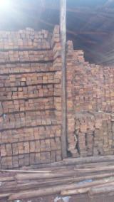Laubschnittholz, Besäumtes Holz, Hobelware  Zu Verkaufen - Balken, Mahagoni
