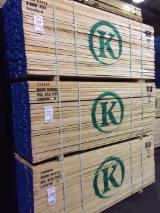 Schnittholz Und Leimholz Nordamerika - Bretter, Dielen, Hard Maple, Zuckerahorn
