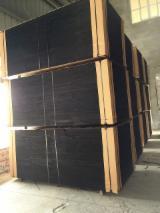 Eucalyptus Film Faced Plywood 12; 15; 18 mm