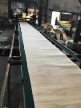 Veneer Supplies Network - Wholesale Hardwood Veneer And Exotic Veneer - Rotary Cut Beech Veneer A-AB-B-C