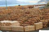 Nadelrundholz Zu Verkaufen Russland - Schnittholzstämme, Sibirische Fichte, Sibirische Lärche, Sibirische Kiefer, FSC