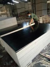 12 mm Poplar Core Black Film Faced Plywood