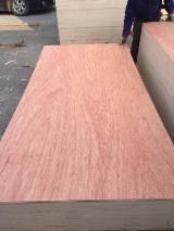 4.5 mm Bintangor Natural Plywood
