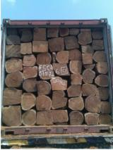 Kopen Of Verkopen  Square Logs Loofhout - Square Logs, Doussie , Vene, Kosso Wood, Tali