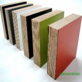 Melamine Poplar Faced Plywood for Furniture