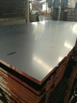 Plywood For Sale - 10 mm Poplar Film Faced Plywood