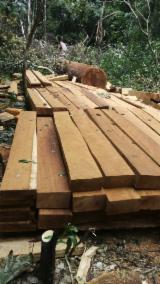 Veneer Supplies Network - Wholesale Hardwood Veneer And Exotic Veneer - Rotary Cut Iroko Veneer