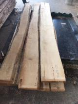 Unedged Timber - Boules importers and buyers - Beech Loose Timber 45/50 mm