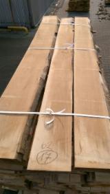 供应 波兰 - 毛边材-圆木剁, 榉木
