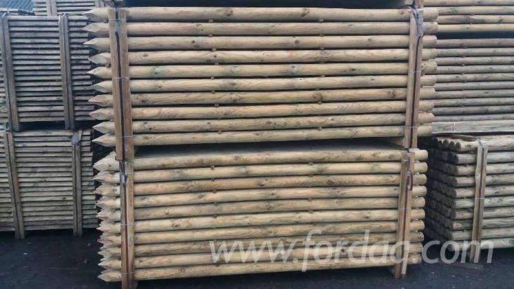 Vend piquets tuteurs pin bois rouge fsc brest region belarus - Tuteur bois brico depot ...