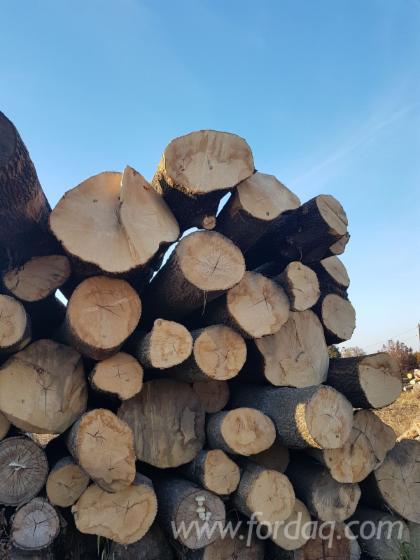 White-Ash-Logs-30-