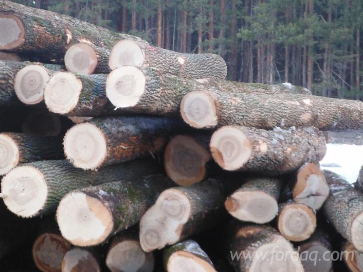 Ash-Logs