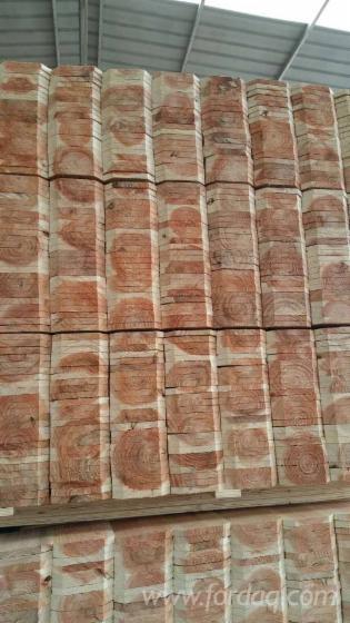 Cedar Fence Boards