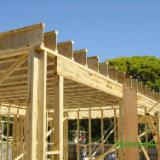Furnierschichtholz - LVL Zu Verkaufen - Greentrend, Pappel