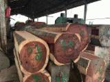 Japan - Fordaq Online market - Padauk Square Logs 50+ cm