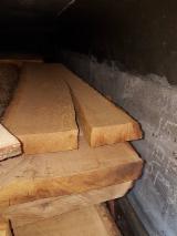 Laubholz  Blockware, Unbesäumtes Holz Zu Verkaufen Ukraine - Blockware, Eiche