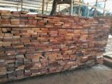 Forest And Logs South America - FSC Teak Logs 110+ cm