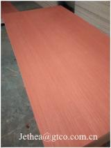 Red EV Sapele Veneer Plywood