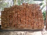 Colombia - Fordaq Online market - chain saw squares. good cut. no bark. good allowance