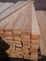 Find best timber supplies on Fordaq - JSC FORPOST - Siberian Larch Lumber 22,25,32,35,42,50 mm