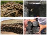 Energie- Und Feuerholz Holzkohle - Kastanie, Eukalyptus Holzkohle