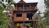 Naaldhout  Stammen En Venta - Constructie Balken Rond