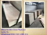 Okoume Veneer Laminated Door Size Plywood