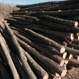 Conical Shaped Round Wood - Acacia Poles 12-20 cm