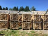 Czech Republic Supplies - KD Beech Firewood 1 RM 33 cm FSC