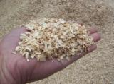 Firewood, Pellets And Residues - Ash and Beech Wood Shavings and Saw Dust
