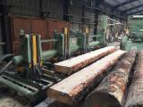 Netherlands Supplies - LBL Brenta log bandsaw line Bibat 1400 Tandem + CT600 + FL