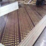 18 mm Poplar Marine Film Faced Plywood